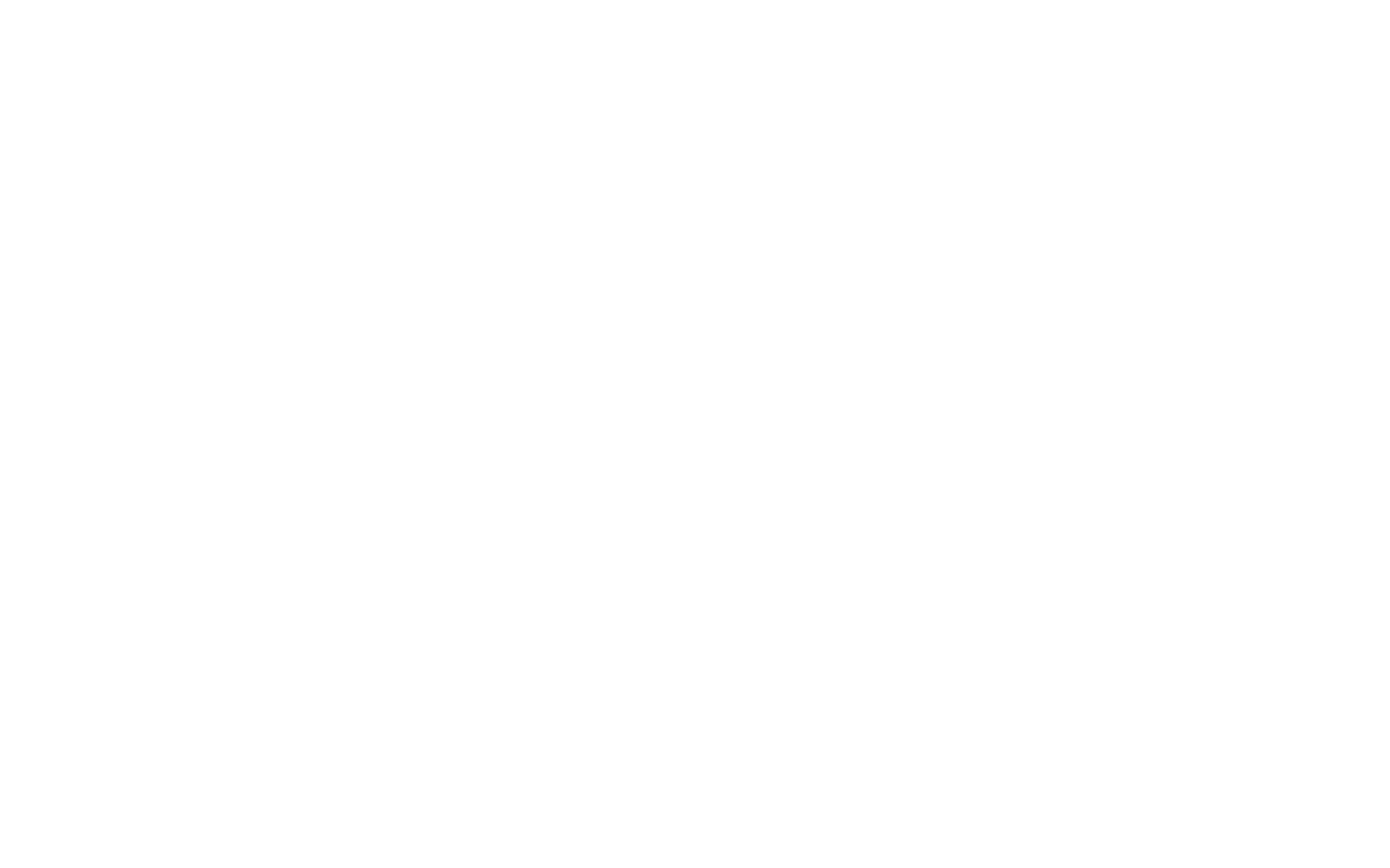 newer white triangle.png