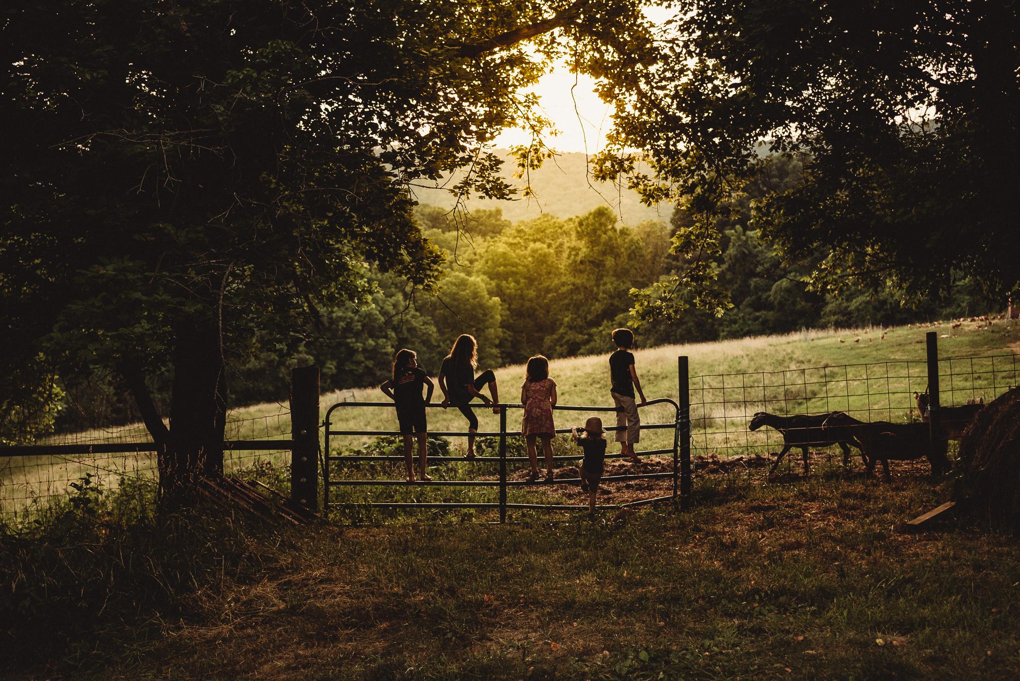 summer18.farmkidsunset.jpg