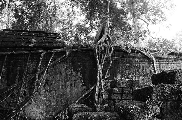Natural Ruins -