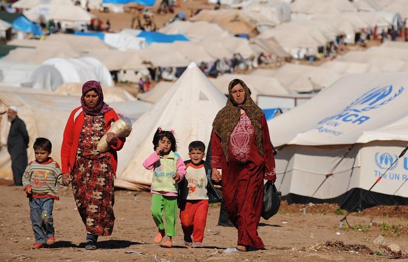 syrian_small 2.jpg