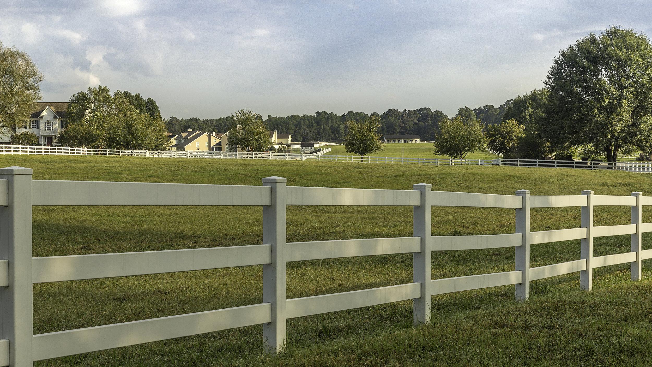 Pasture 5