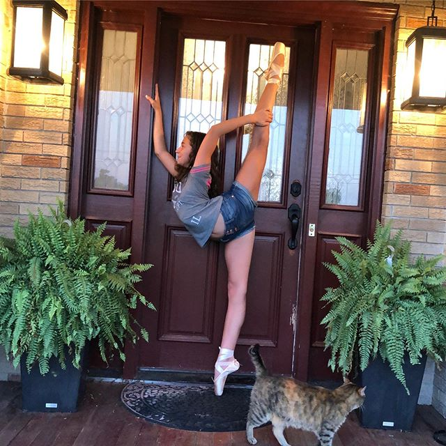 Practice makes purrr-fect || #summer2019 #dancerslife . . . . . #lilapfefferle #flexibilityposts @flexibilityposts_  #pointe #ballet #lovewhereyoulive #prokid @innovativeartists @shirleygrantmanagement @leesacsolak.lbctalent @lbctalentnyc @starmakerschool @hunterdonhillsballet @matthewse143