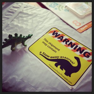 stow-away-asaurus