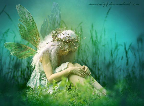 39dd7a5dc997a47d8c7c5975492f98c6-sad-fairy-butterfly-kisses-600x443.jpg