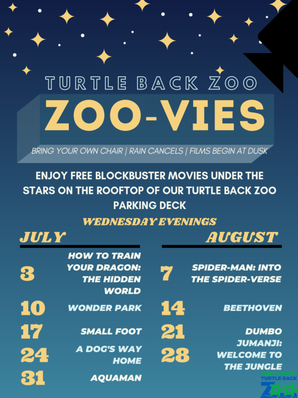 TURTLE-BACK-ZOO-1-600x800.png