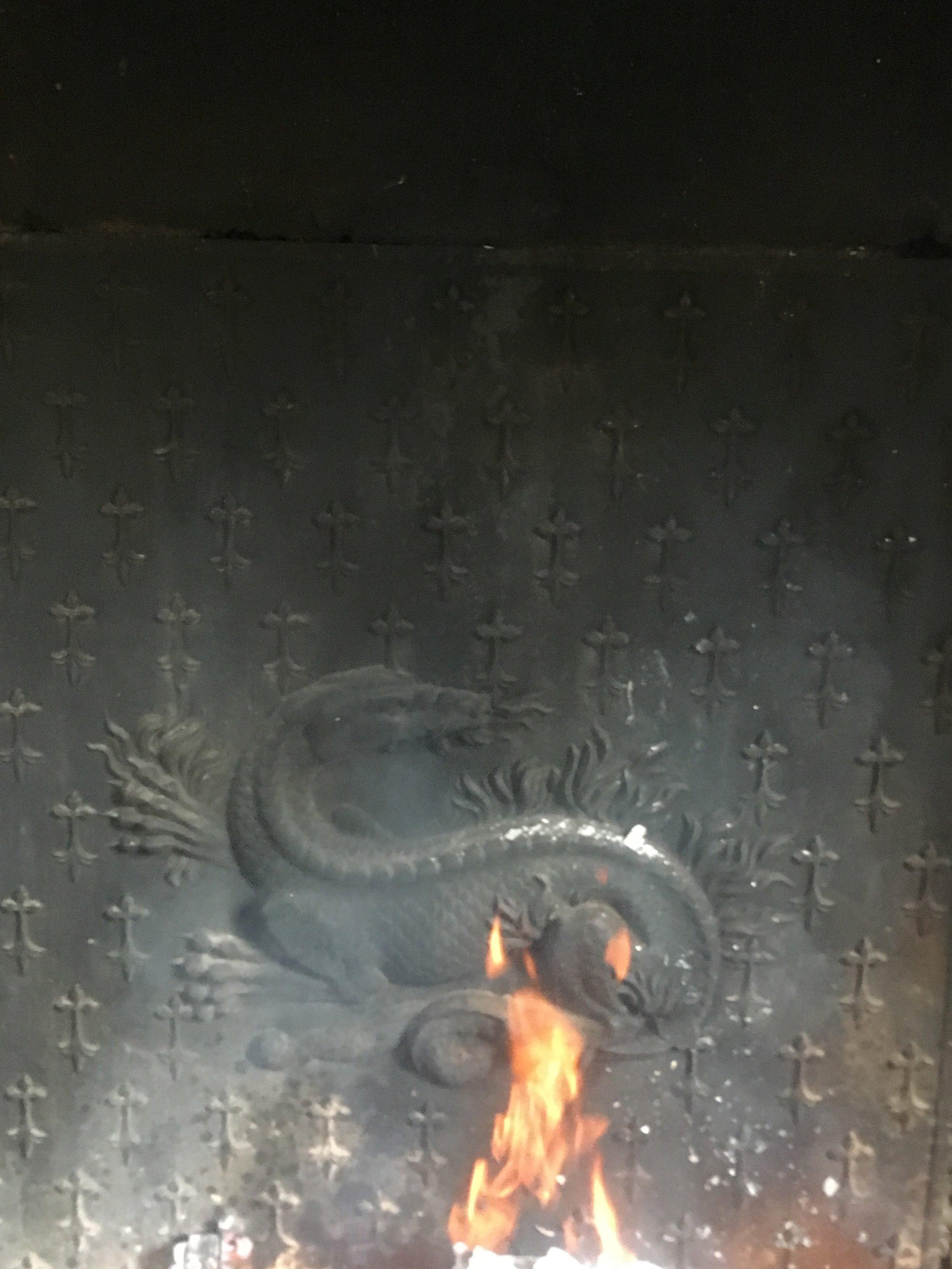 Salamandre cheminée.JPG