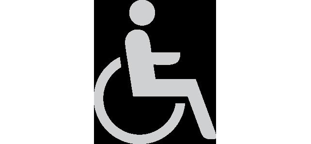 Handicap_access_20grey.png