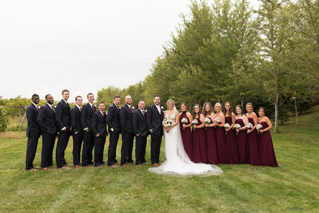 Maple Park Wedding Photographer, Acquaviva Winery Wedding, Acquaviva Winery Wedding Photographer (101 of 177).jpg