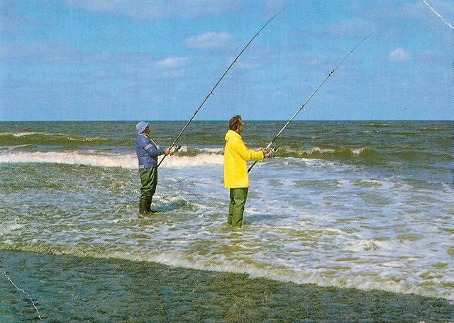 Olmoost vissers.jpg