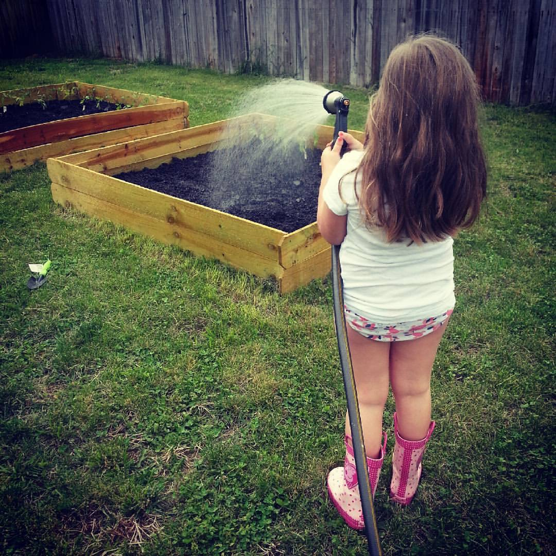 Get your kiddos involved! My daughter loved getting her hands dirty and watering each day to see results.