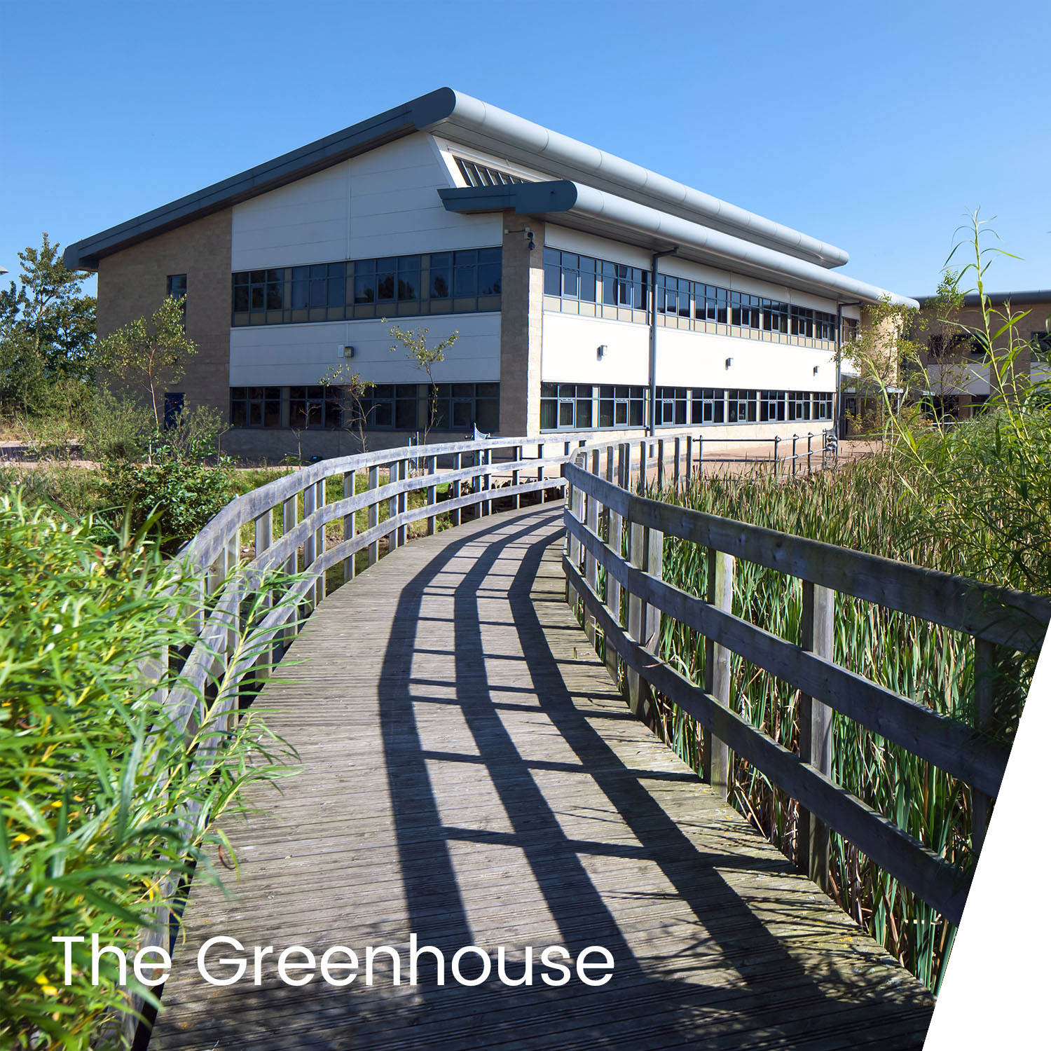 Niven Project - The Greenhouse.jpg