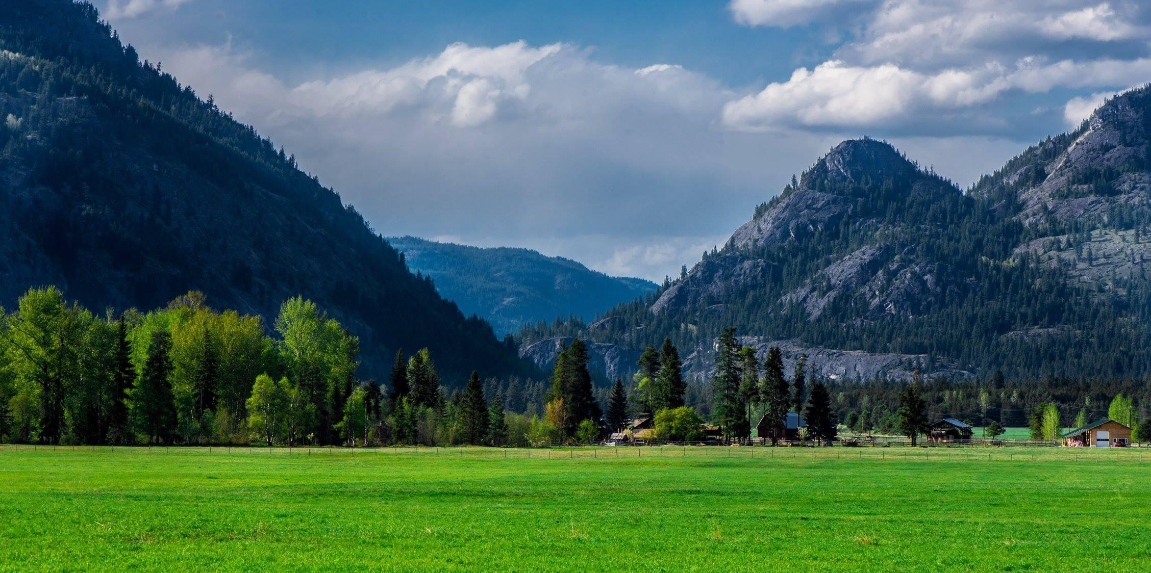 cabin landscape.jpg