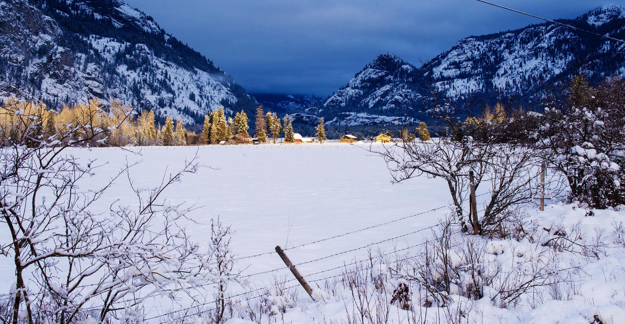 snowy cabin landscape.jpg