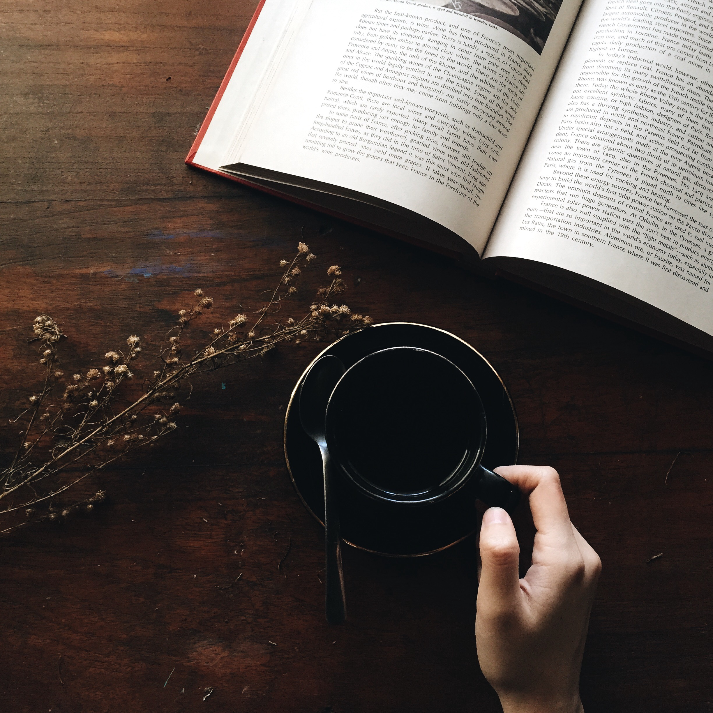 Cafe of Life: Reading in person & online