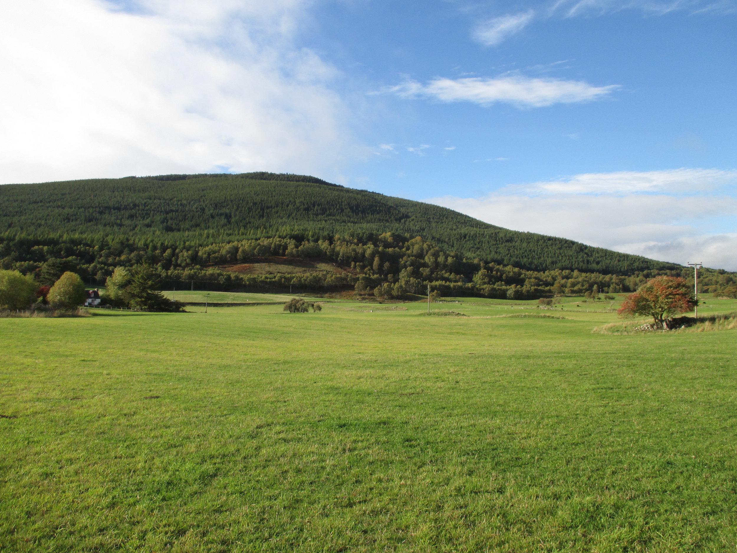 The field near the hidden stone circle, Scotland 2018