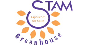 stam-greenhouse.png