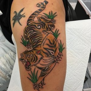 Custom Color Traditional Tiger Tattoo by Shane Rogers at Certified Tattoo Studios in Denver.jpg