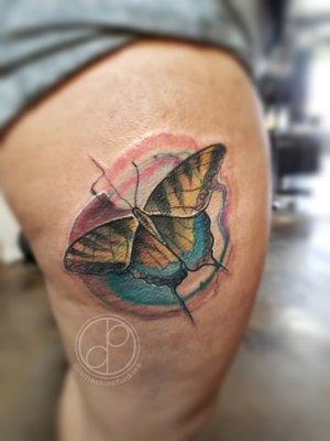 Custom Color Illustrative Butterfly Tattoo by DavidP at Certified Tattoo Studios Denver Co.jpg