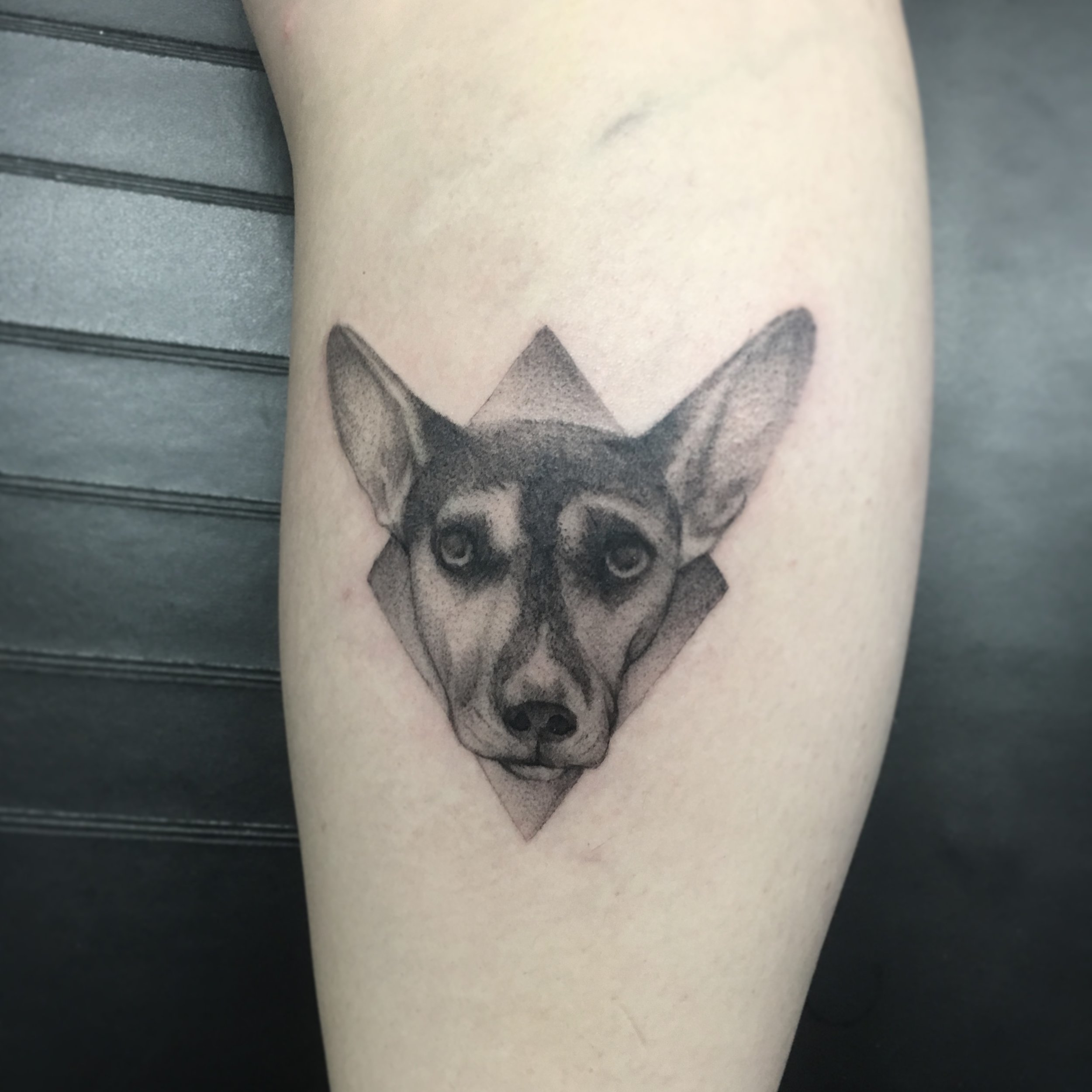 Custom Black Dog in a Diamond Tattoo by  BJ at Certified Tattoo Studios Denver Co  (3).JPG