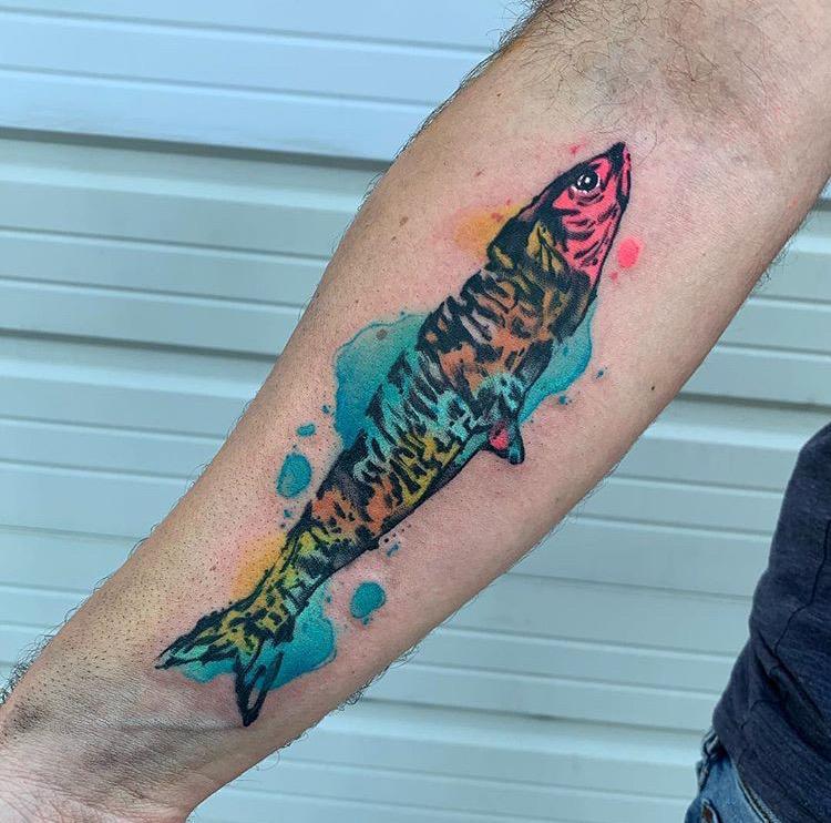 Custom Water Color Sardine Fish Tattoo by Skyler Espinoza at Certified Tattoo Studios Denver Co.JPG