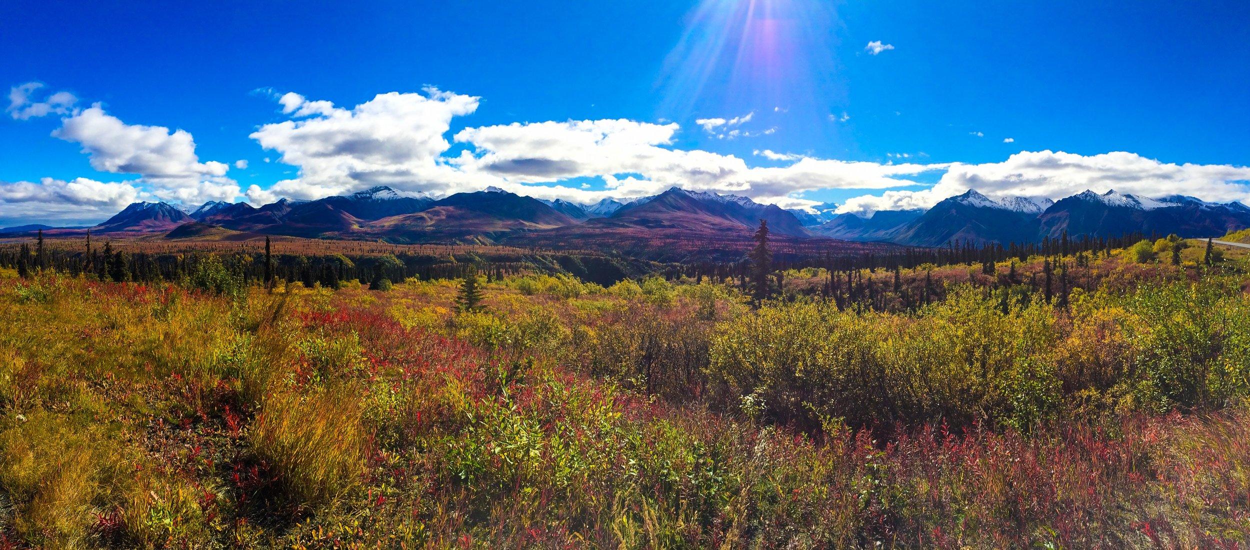 autumn in alaska...unreal