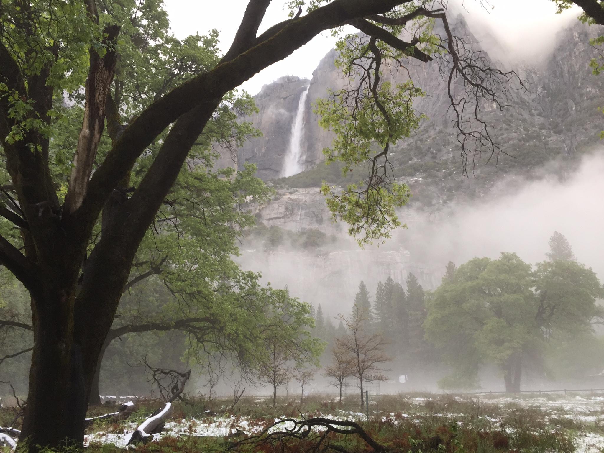 Yosemite falls as the night comes