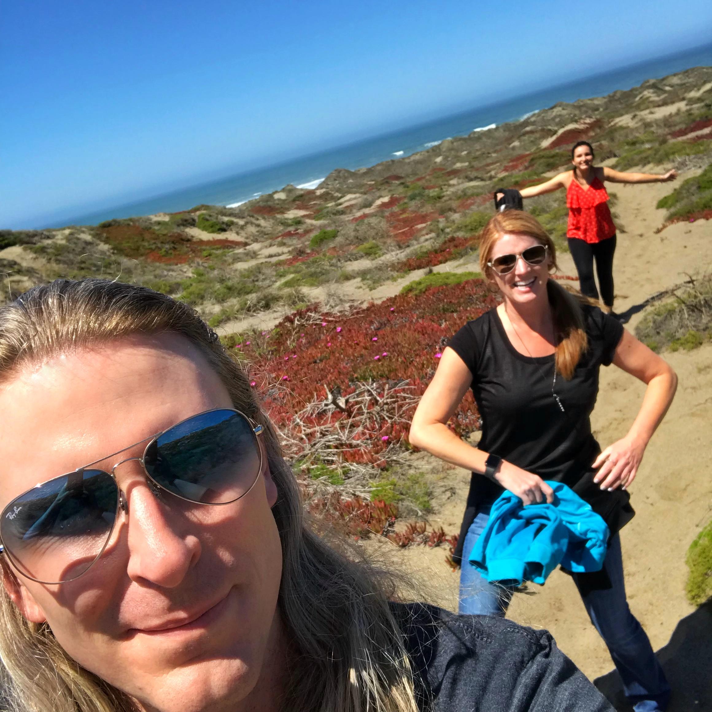 Bodega Bay dunes