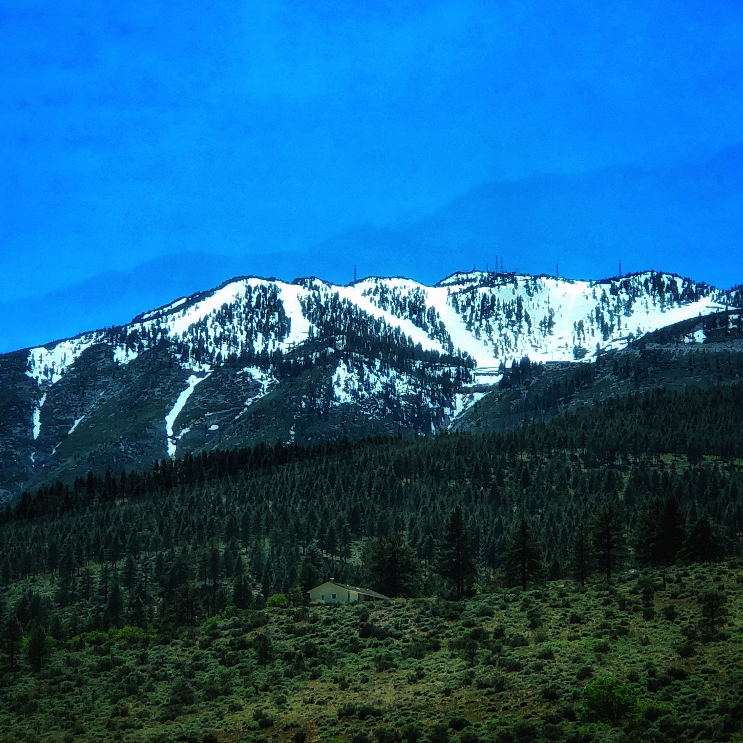 The Beauty of Nevada   Driving towards Davis Camp and enjoying the view of  Mt Rose Ski Resort  on the way. The camp is behind the south face of the hill has it's own awesome trails. We do plan on hiking Mt Rose soon, once the snow melt allows for safer passage.