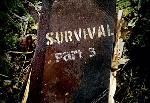 A Matter of Survival Part 3