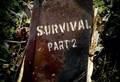 A Matter of Survival Part 2
