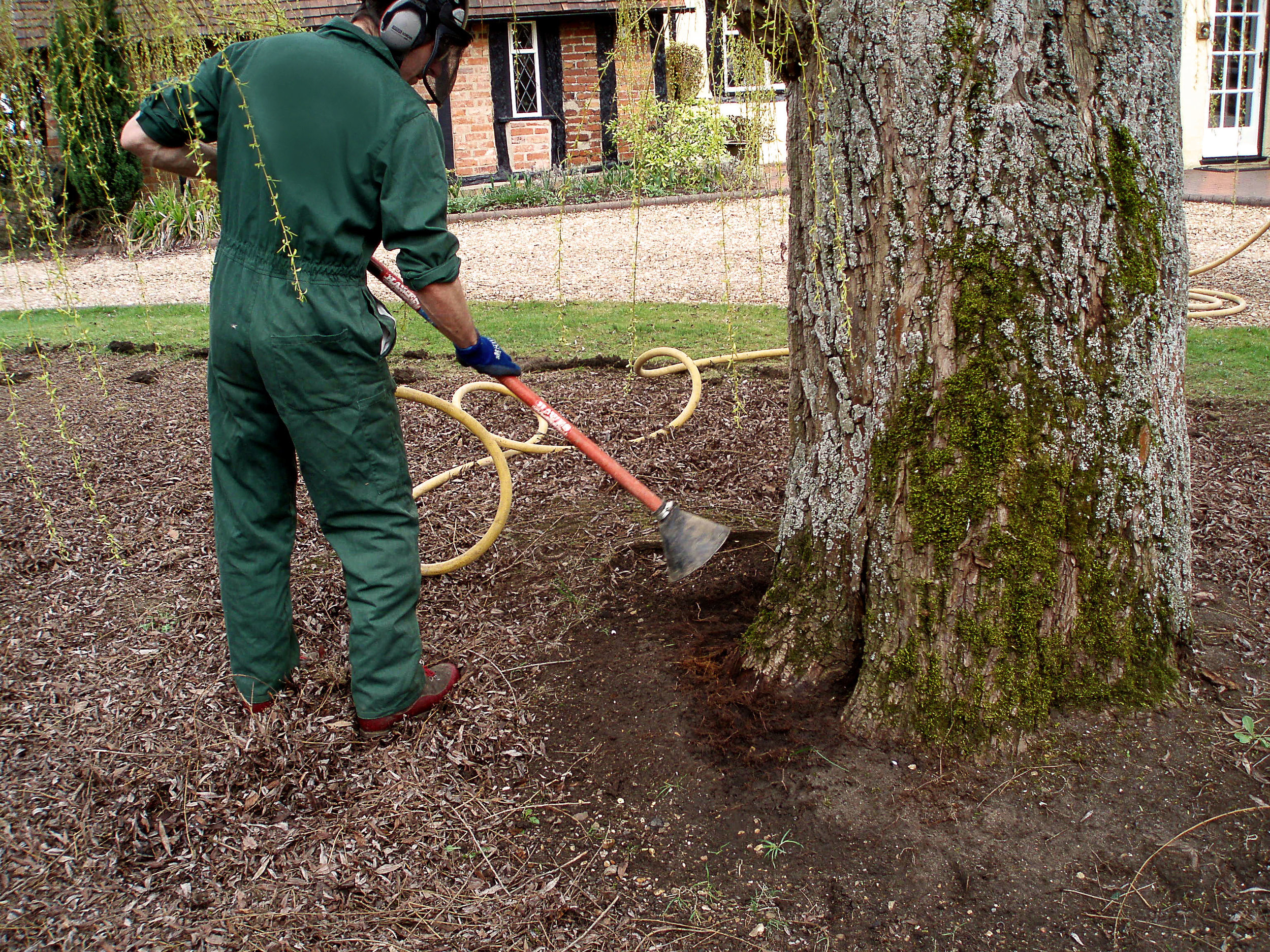 arborist-using-a-soilpick-to-carry-out-root-collar-excavation.jpg