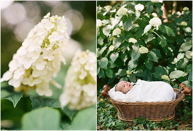 newborn || film photography || cara dee photography_0360.jpg