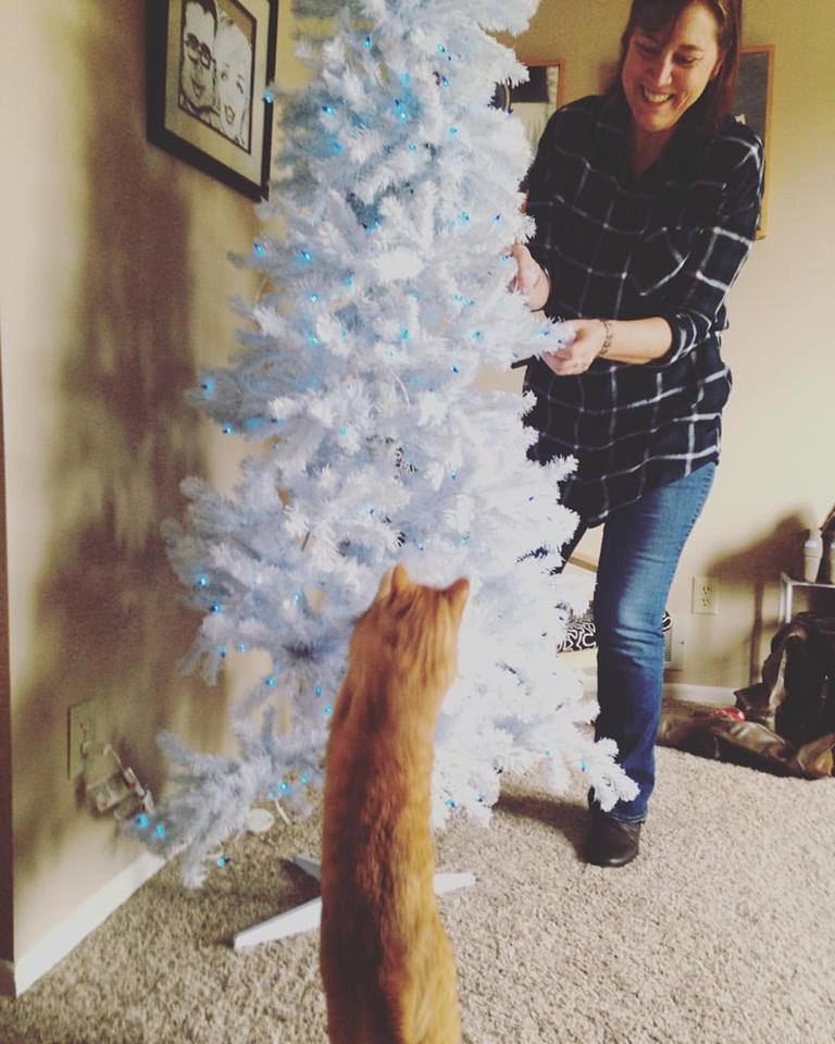 This is my Mom helping us set up our tree at our house. Every holiday season includes cat help. This year was no exception.