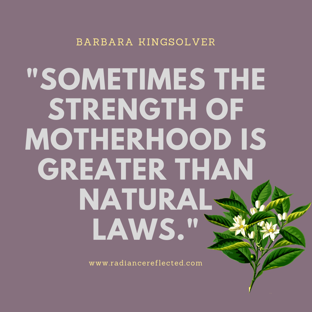 Motherhood, Barbara Kingsolver