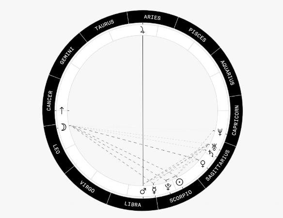 Natal Chart Basic.png