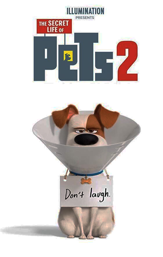 The Secret Life of Pets 2 - The laughs flow from beginning to end as we fall back into step with the animal residents of a New York apartment block. Max and Duke are back, and so are the rest of the gang as The Secret Life of Pets 2 charms in cinemas nationwide.