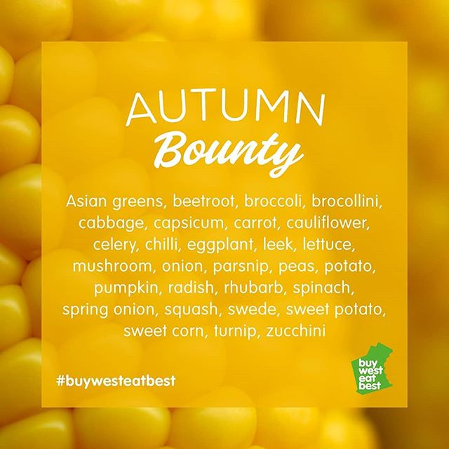 Seasonal change means new flavour sensations - how many of these fruit and veg have you sampled so far this #autumn? Don't forget that eating in-season not only keeps your diet varied but is also better for the environment 💚 ⠀⠀⠀⠀⠀⠀⠀⠀⠀⠀⠀⠀⠀⠀⠀⠀⠀⠀⠀⠀⠀⠀⠀⠀⠀⠀⠀ Be sure to tag #buywesteatbest in your autumn creations! ⠀⠀⠀⠀⠀⠀⠀⠀⠀⠀⠀⠀⠀⠀⠀⠀⠀⠀⠀⠀⠀⠀⠀⠀⠀⠀⠀ #autumn #autumnmenu #homegrown #homegrownfood #locallysourced #homemade #homemadefood #westisbest #buylocal #localfood #supportlocal #wamade #wagrown #food #foodie #instafood #foodstagram #instafood #foodlover #foodies #yummy #delish #hungry #delicious  #localgrowers #localproduce