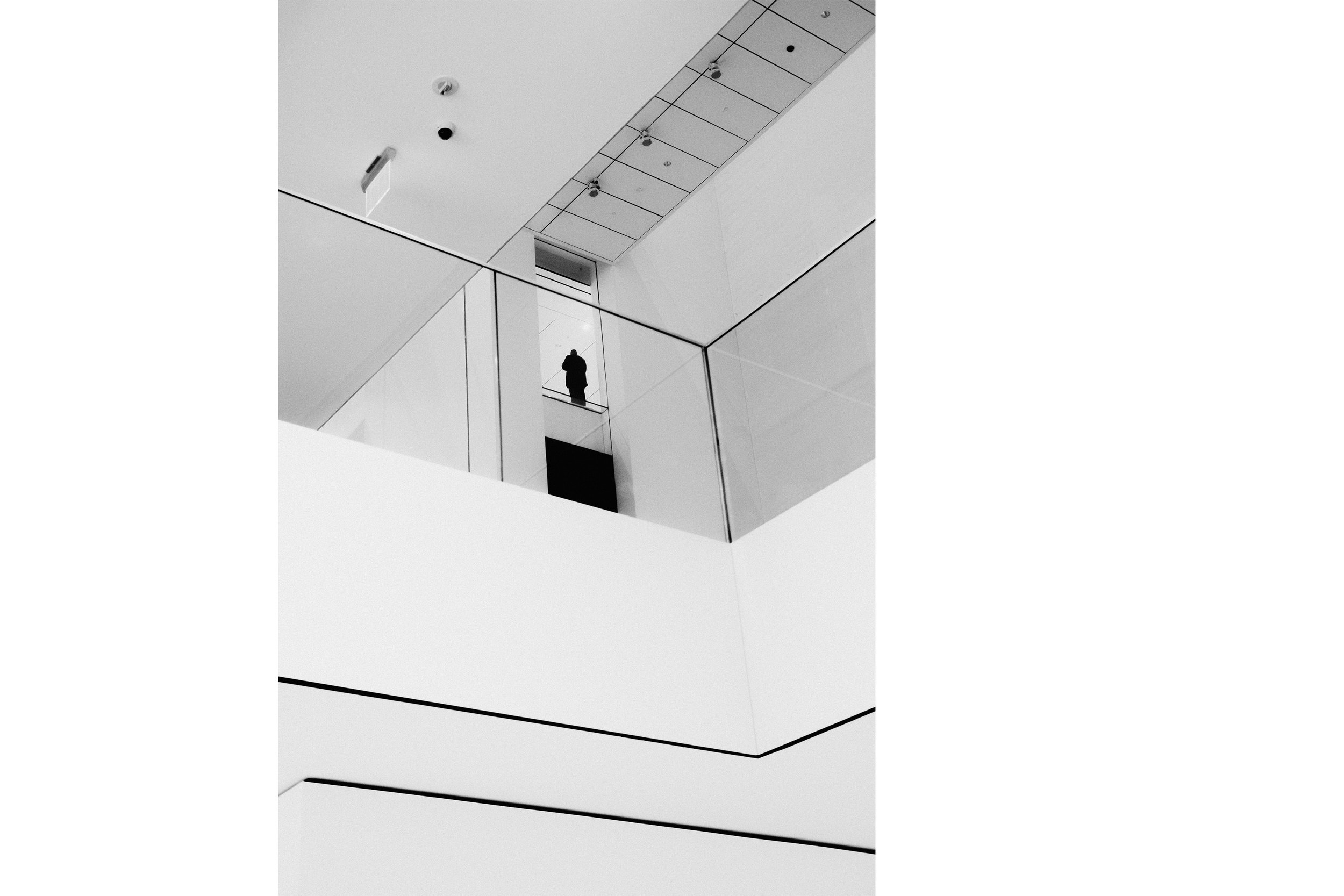 Man at the top of MoMA , NYC, 2018
