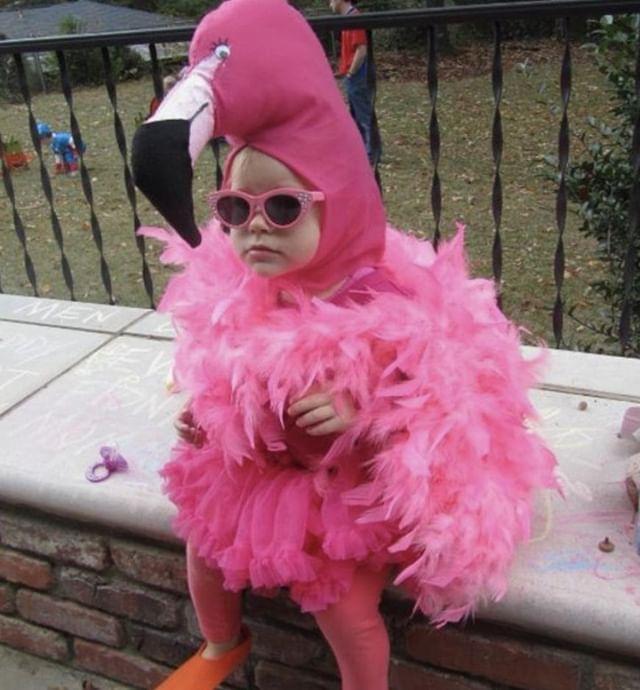 "Them: ""It's just after work drinks, you don't need to dress up or anything""⠀ Me:⠀ .⠀ .⠀ .⠀ .⠀ .⠀ #livelovelaugh #funnymum #sarcasticmama #kidsofsydney #mumsofsydney #dressups #flamingo #hahalol #babysittingapp"