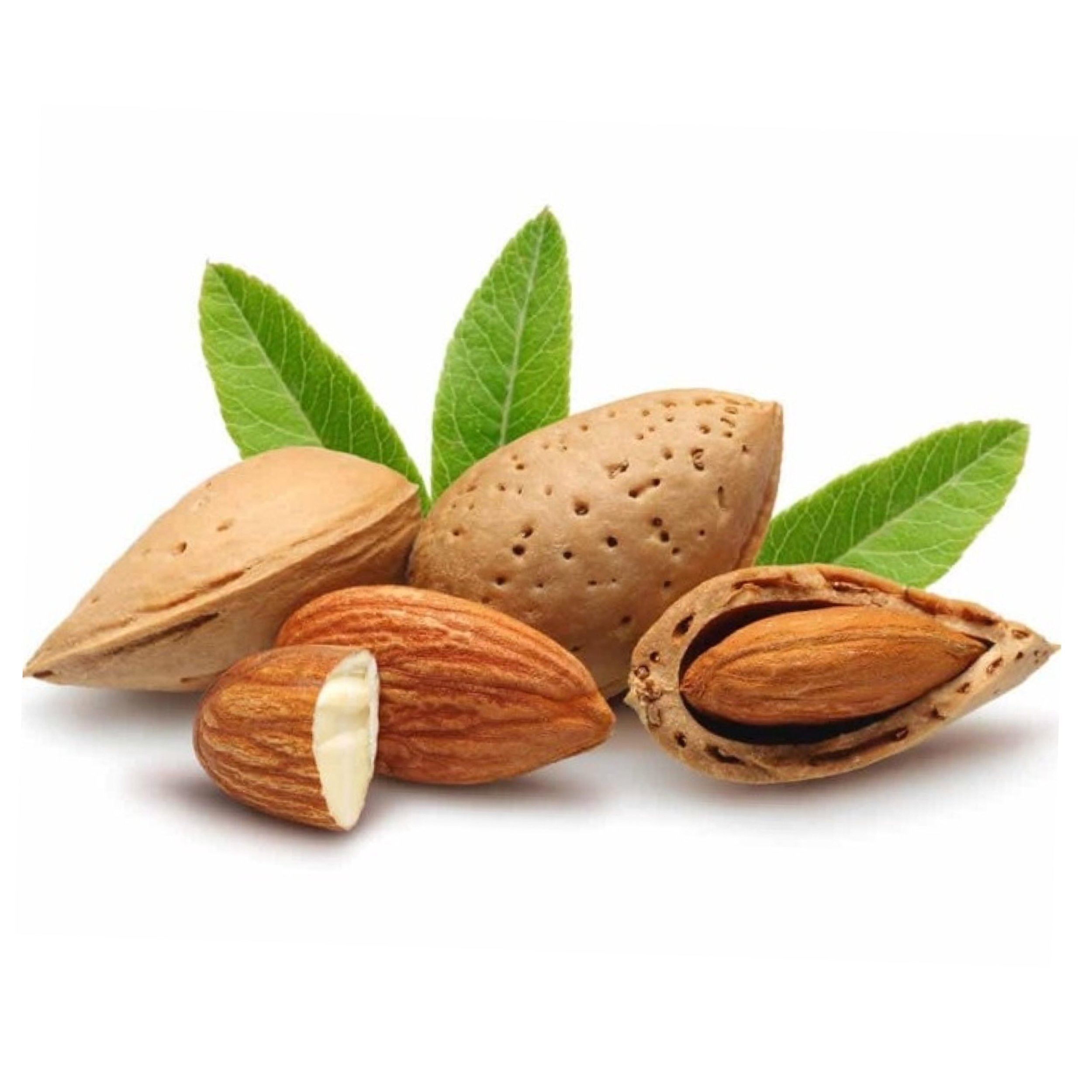 ALMOND OIL   Highly rich in Vitamin E and an excellent natural antioxidant. Nourishing the skin, hair & nails, regenerating new skin and keeping in moisture
