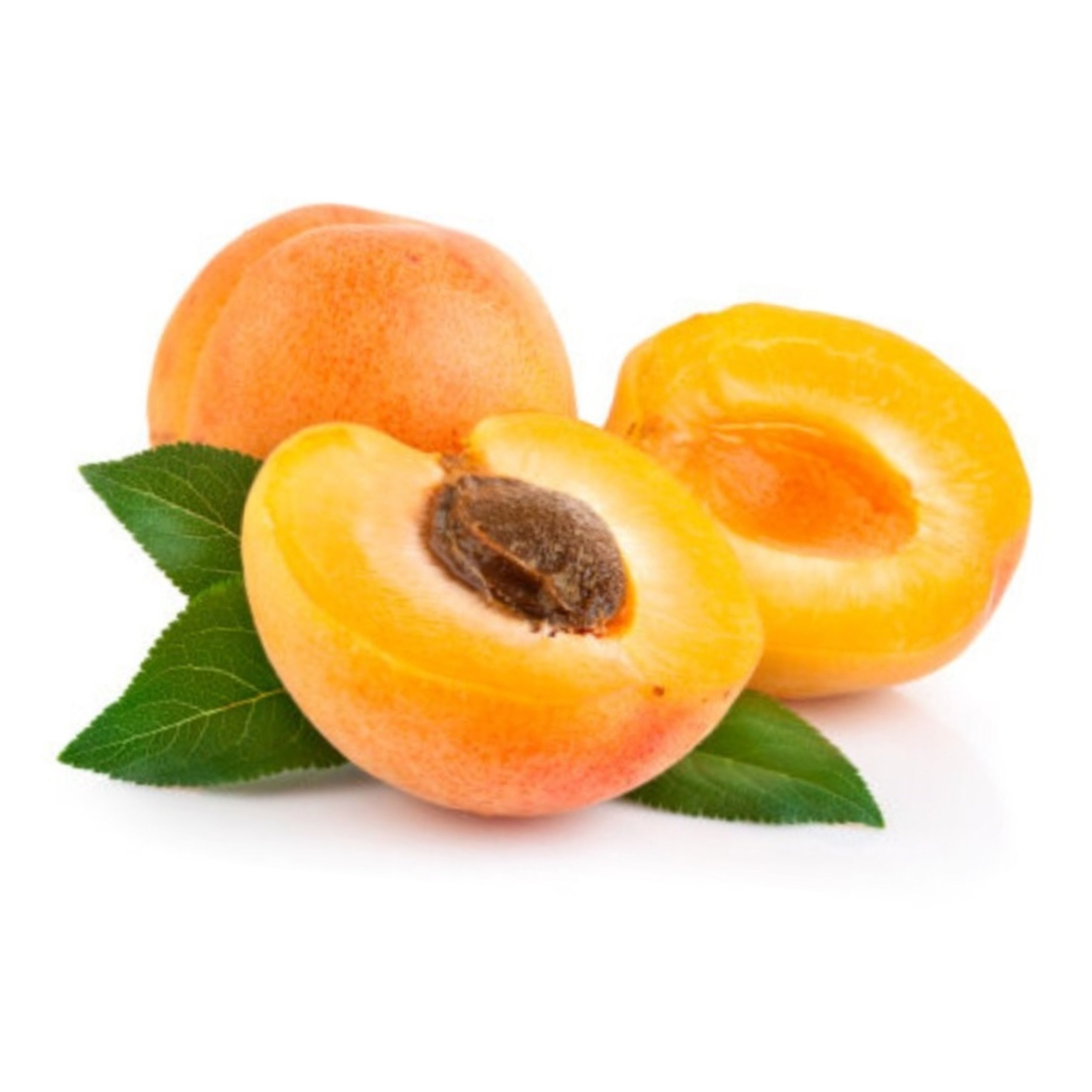 APRICOT KERNEL OIL   Excellent anti-inflammatory and anti-bacterial. The high antioxidant content in apricot kernel oil make it great for protecting the skin from free radicals.