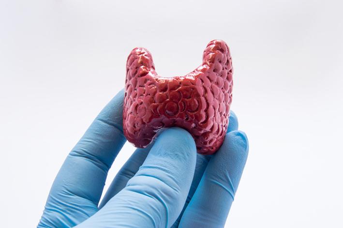Thyroid Surgery Endochrine System.jpg