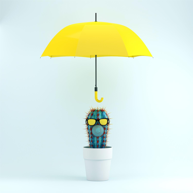 cactus-face-umbrella.jpg