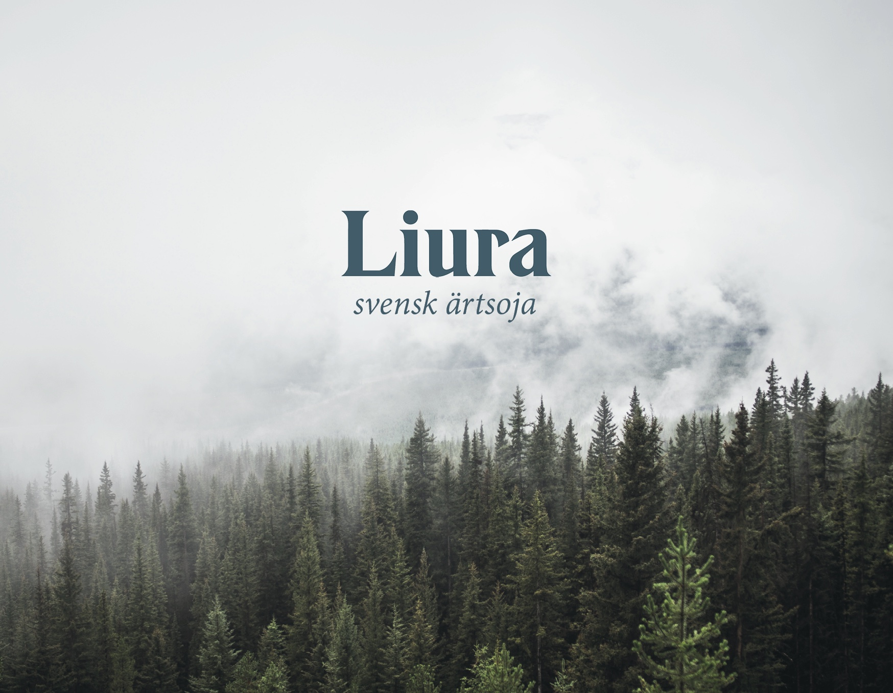 LIURA_BILD.jpg