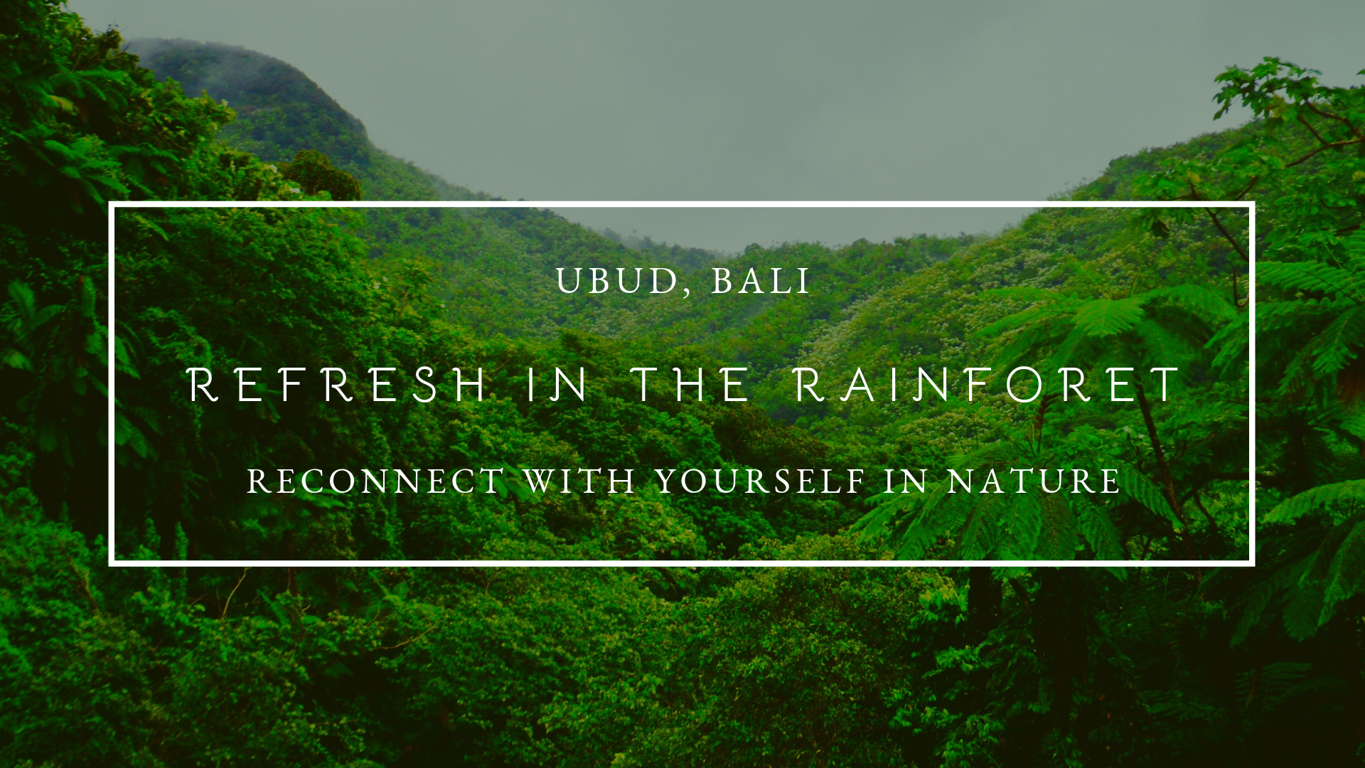 Refresh in the Rainforest - FB EVENT COVER.png