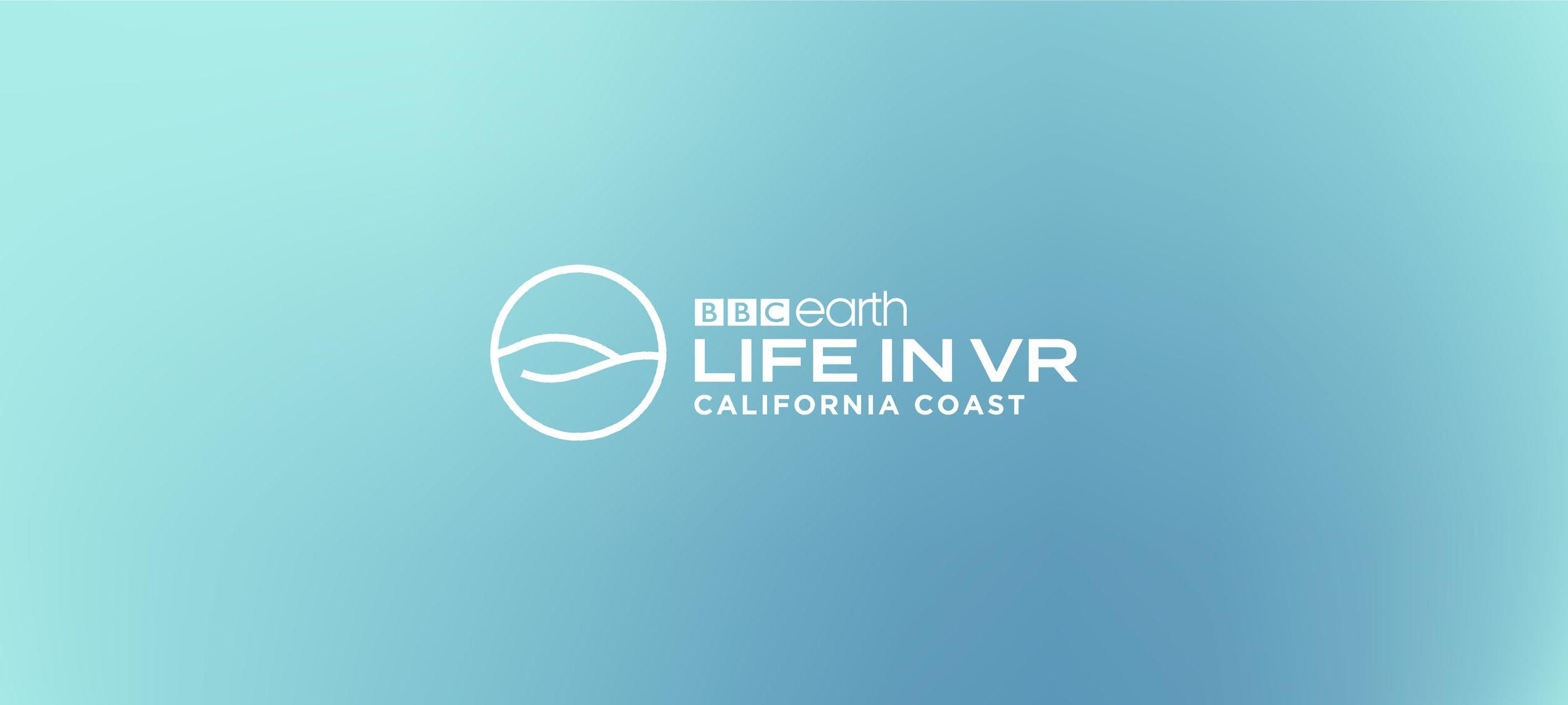 Life-in-VR_-03.jpg
