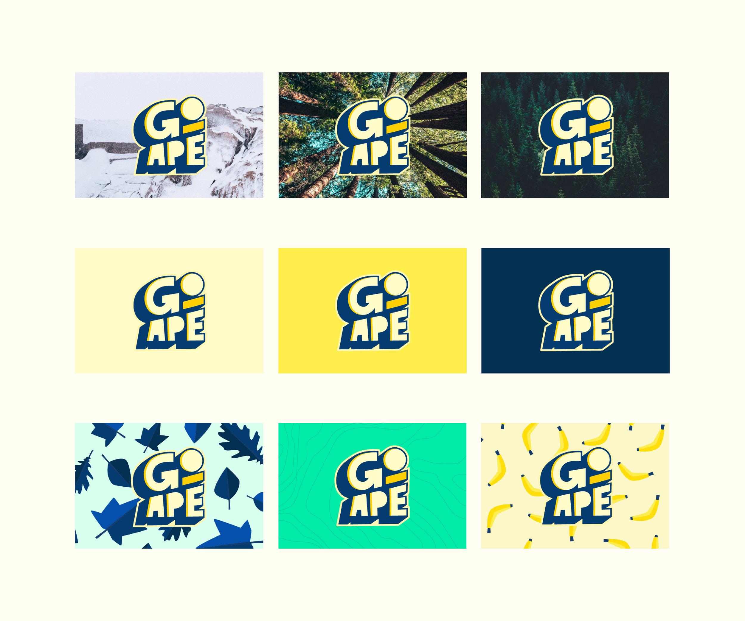 03_GoApe-22.jpg
