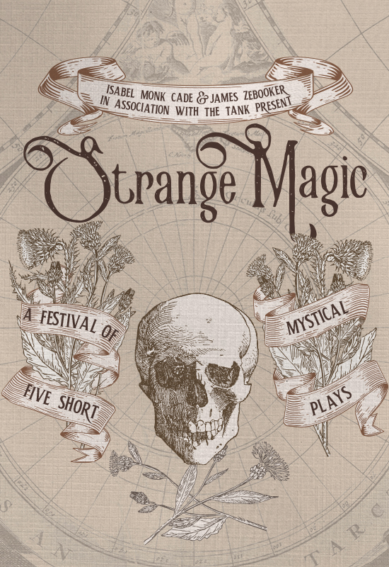 Strange Magic 550x800 - James Zebooker.jpg