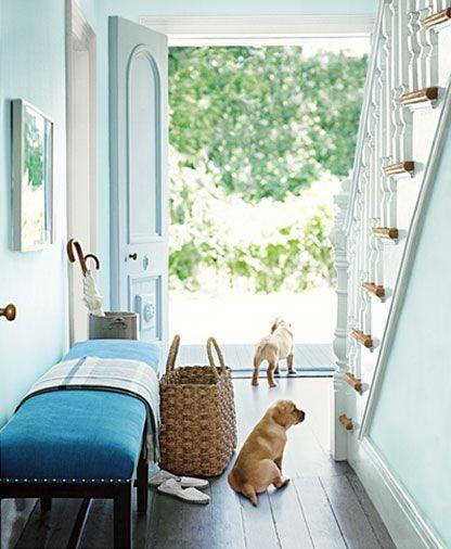 floor basket  (& puppy tails) ,…
