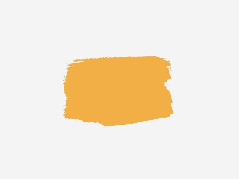 goldenrod_-sherwin-williams.jpeg